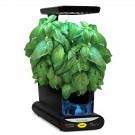 AeroGarden 3-Pod Pesto Basil Seed Kit