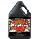 Nature's Nectar Phosphorus 0-4-0, 1 gal