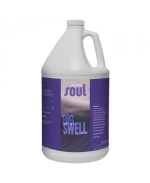 Soul Big Swell Gallon (4/Cs)