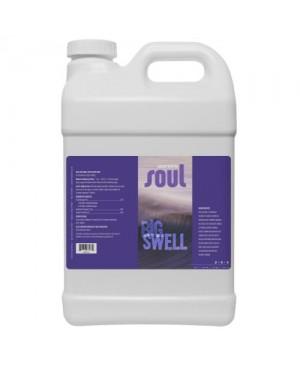 Soul Big Swell 2.5 Gallon (2/Cs)