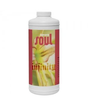 Soul Infinity Quart (12/Cs)