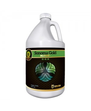 Cutting Edge Sonoma Gold Bloom Gallon (4/Cs)
