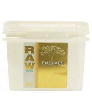 Raw Enzymes 10 lb (1/Cs)