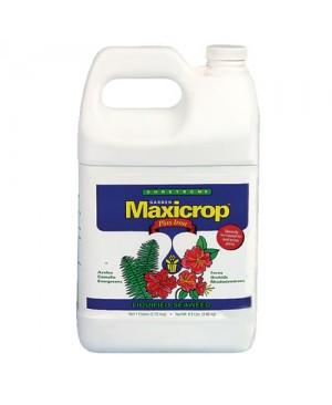 Maxicrop Plus Iron Gallon (6/Cs)