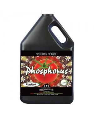 Nature's Nectar Phosphorous Quart (12/Cs)