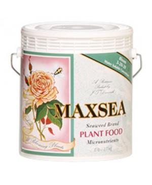 Maxsea Bloom Plant Food 6 lb (3-20-20) (4/Cs)