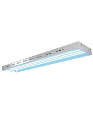 Sun Blaze T5 HO 44 - 4 ft 4 Lamp - 240 Volt