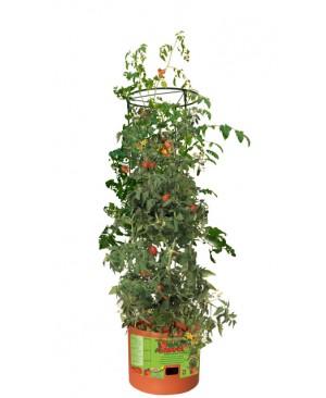 Tomato Barrel w/4' Tower