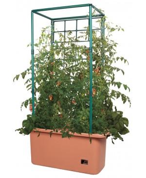 Tomato Trellis Garden on Wheels