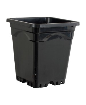 "Active Aqua 12"" x 12"" Square Black Pot, 12"" Tall, case of 24"