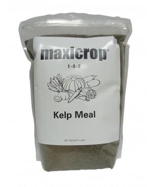 Maxicrop Kelp Meal, 5 lbs