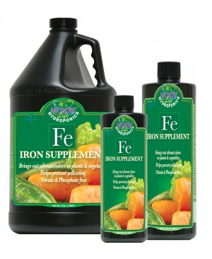 Iron Supplement, 1 gal