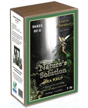 Nature's Solution Organic Sea Kelp, 1 lb