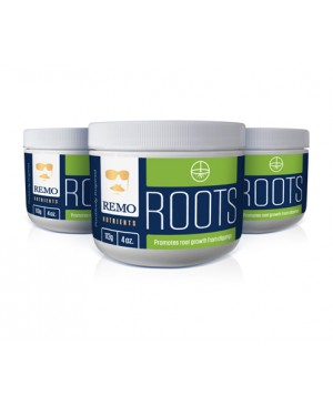 Remo Roots, 7 gr (1/4 oz)