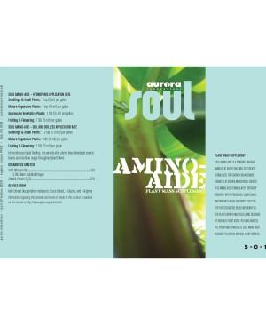 Soul Amino Aide, 15 gal